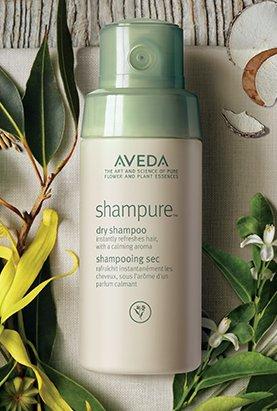 Dry-Shampoo-photo